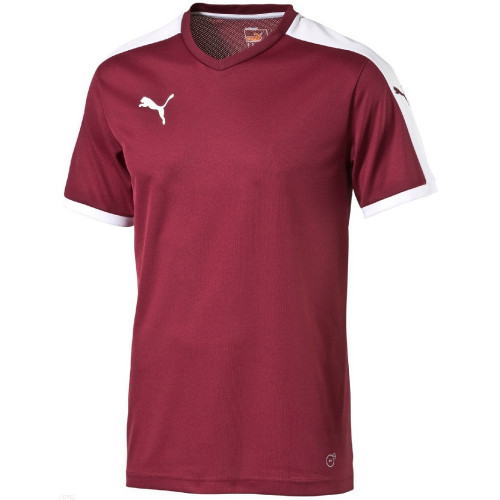Maillot de foot ENFANT PUMA PITCH MC SHIRT JR