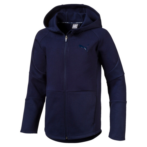 Sweat zippé ENFANT PUMA JR EVOSTRIPE FZ HOODY